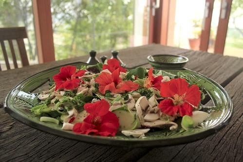 Insalata di spinaci - Spinach salad