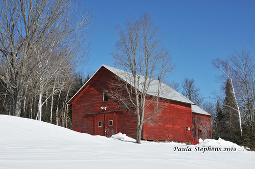 Red Barn by Paula Stephens