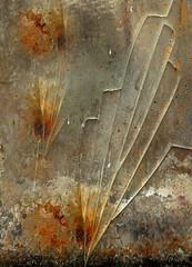 Rust-attack