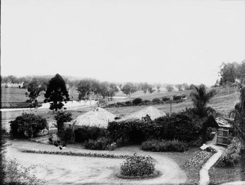 Garden, Nindooinbah Station, ca 1924