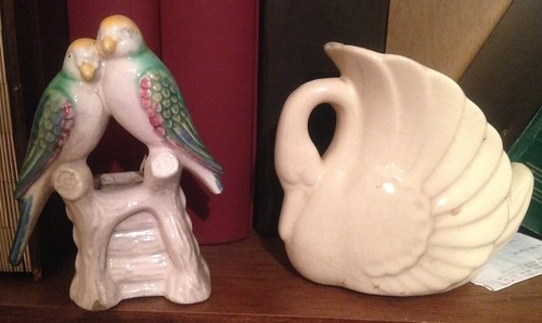 Parakeets and Large swan