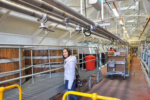 Greene King Brewery vats
