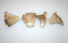 05 - Zutat Austernpilze / Ingredient oyster mushrooms