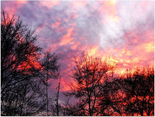 ~ Fire in the Sky ~ by Purpletree..(Nancy Lee)