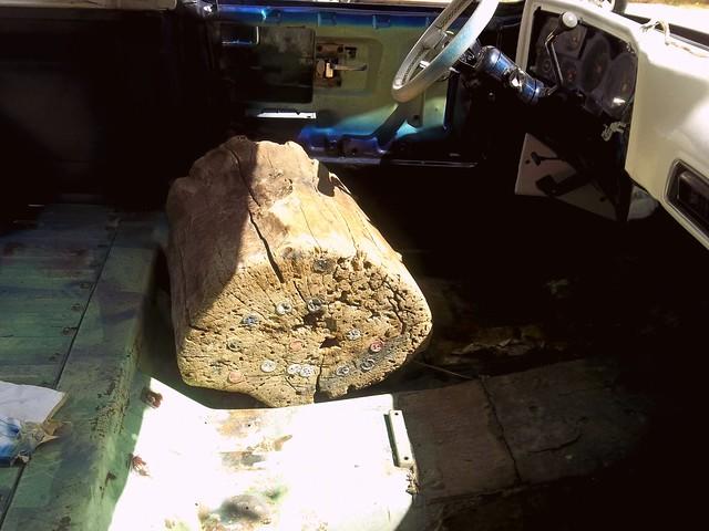 tree trunk truck seat