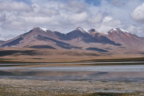 lake bolivia andes altiplano puna potosi lagunacañapa