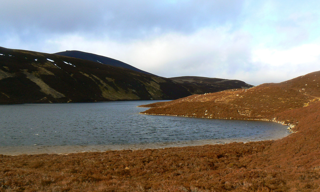 Shoreline at the end of Loch Builg
