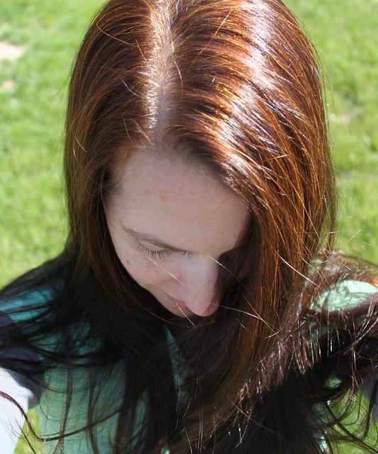 Mahogany Henna Hair Dye Swatch  Dark Brown Hairs