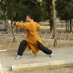 Tue, 15/03/2011 - 05:33 - Shifu Kanishka  www.Shaolinindia.com Shaolin Kung Fu India