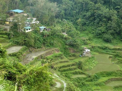 Luzon-Bangaan (105)