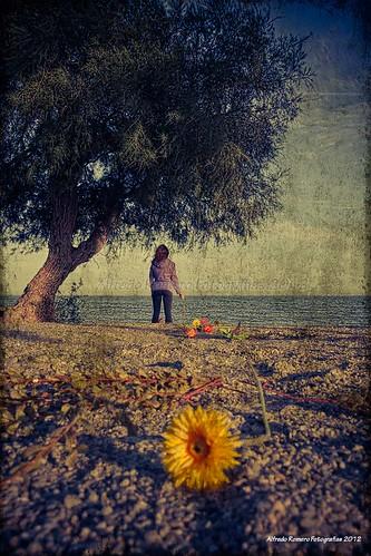 Demasiado lejos by Alfredo Romero Fotografias 