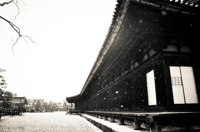 雪花飄。京都