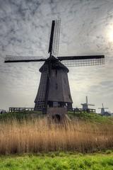 Schermerhorn; Windmills 1