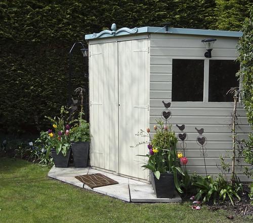 Spring in my garden, Shropshire