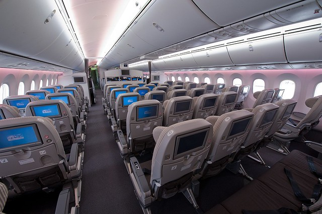 JAL 787 Economy Class view from the back