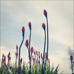 May 2 - Skyline