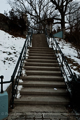 Baldwin Steps