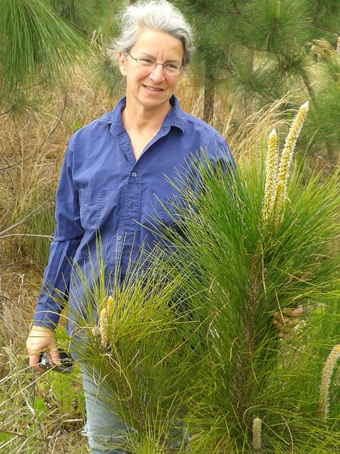 Gretchen with longleaf