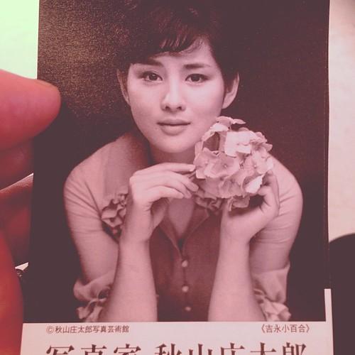 新津美術館の秋山庄太郎展 #niigata