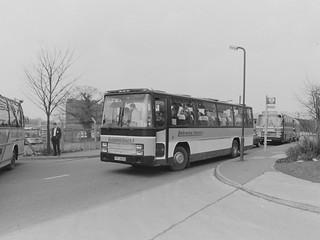Milk Cup Final 1985, Wembley - part 4 (c) Colin Apps