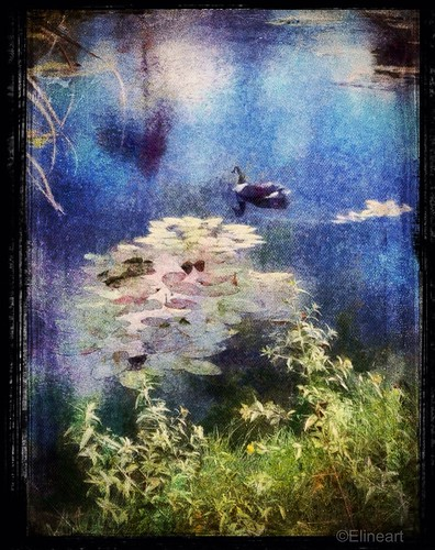 Inspired by Monet by elineart