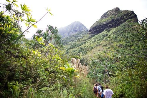 Hawaii Day 2 033