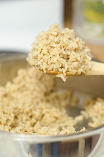 rice on stove