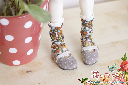 Dot Birken Stock-grey