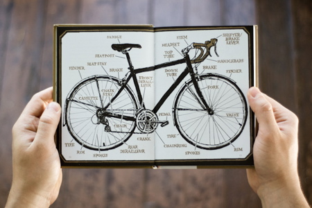 BikeSnob-Bike