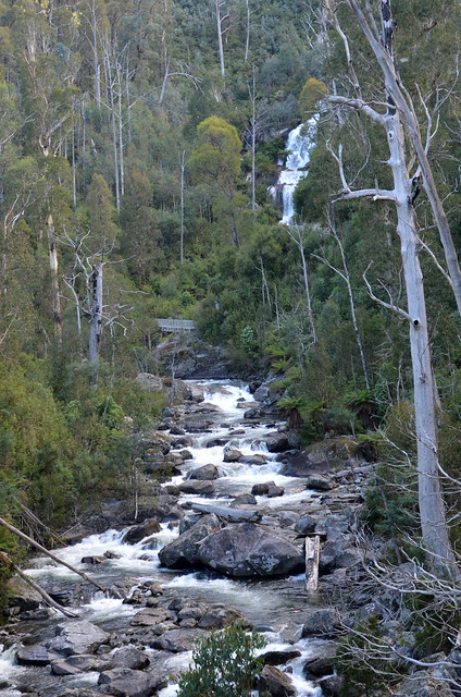 Kiewa River (with Fainter Falls in the distance) - Alpine National Park