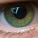 Eye Spy by Oreo Cakester