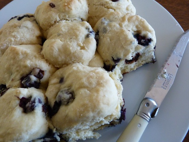 blueberry and choc chip scones