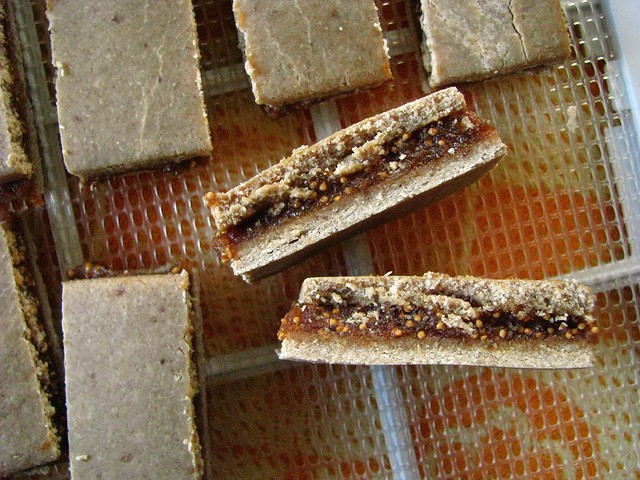 raw vegan fig bars..