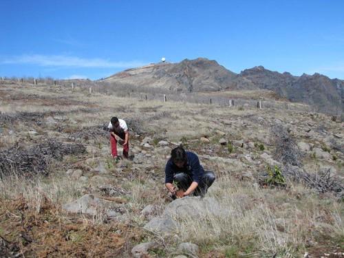 04-Campo de Educação Ambiental do Cabeço da Lenha-21.03.12