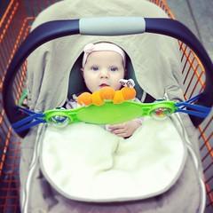 Cart Baby