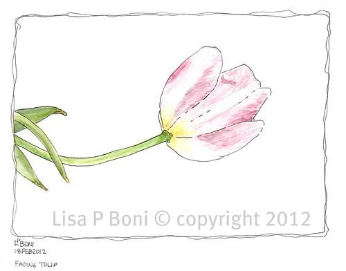 WC sketch 2 2_18_2012