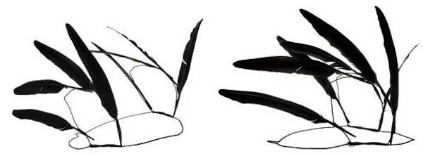 Ann-Demeulemeester-feather-headpiece 1