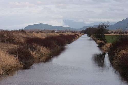 Big Ditch Slough