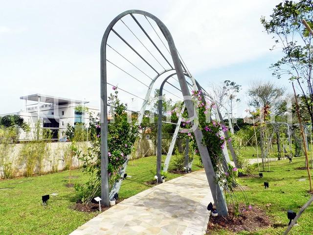 Singapore Botanic Gardens 09