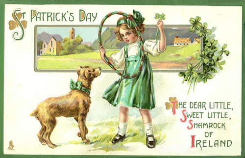 Irelandlittlegirldog