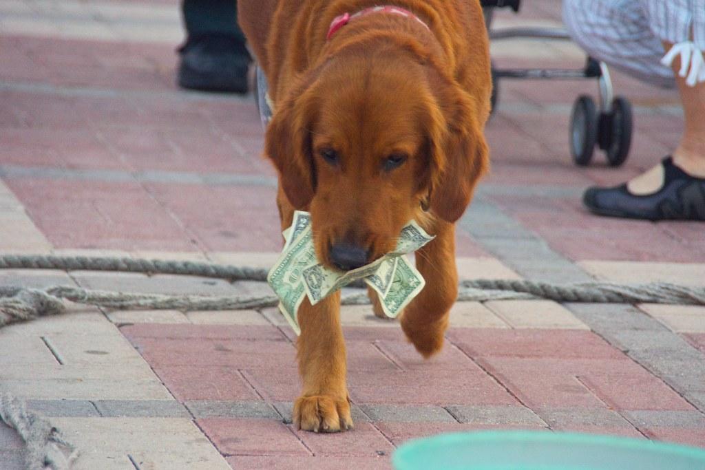 Key West, Feb 2012 - 08