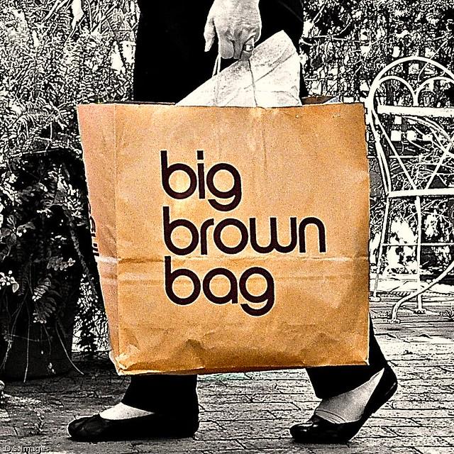 3203 big brown bag 68 366 flickr photo