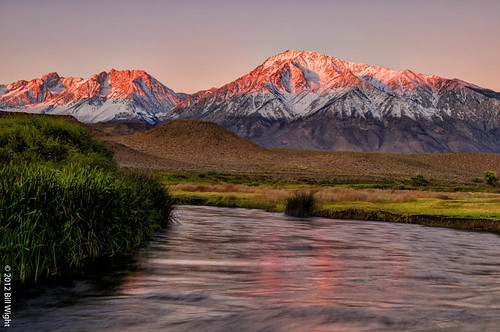 california morning foothills snow water grass sunrise river reeds sierra flowing alpenglow highsierra owensvalley mttom owensriver monocounty snowcoveredmountain billwight copyright2012