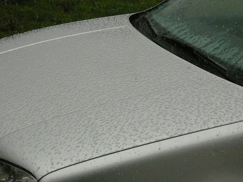 hail on bonnet