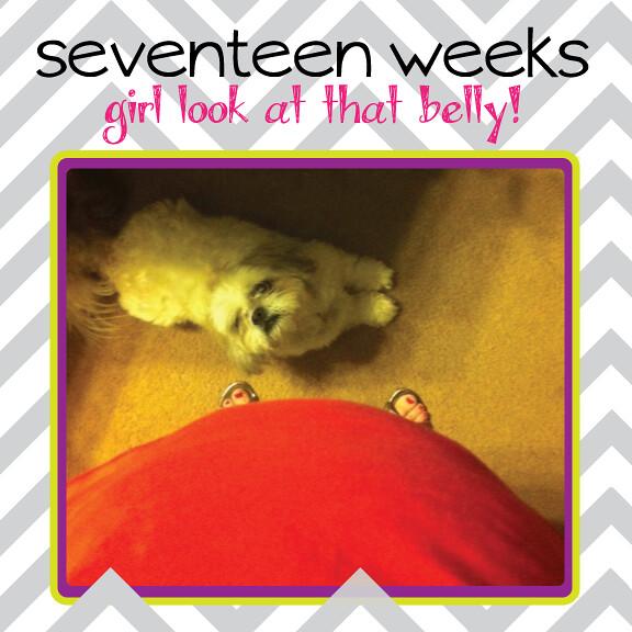 17weeks