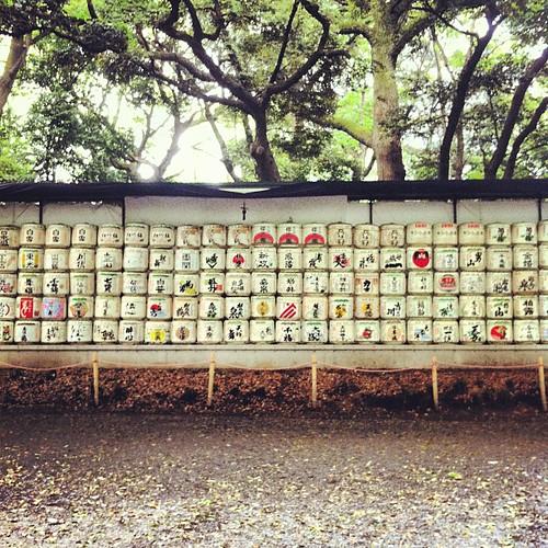Barriles de sake de los diferentes productores del país #yoyogi #tokyo #japan