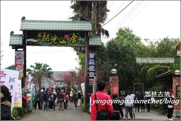 雲林古坑_古坑櫻花20120226_I2755