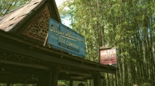 Royal Anandapur Tea Company by DisHippy