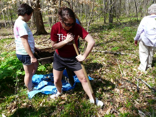 Troy University students conduct shovel tests in an attempt to discover how far the archeological site extends into the woods from the row crop field.