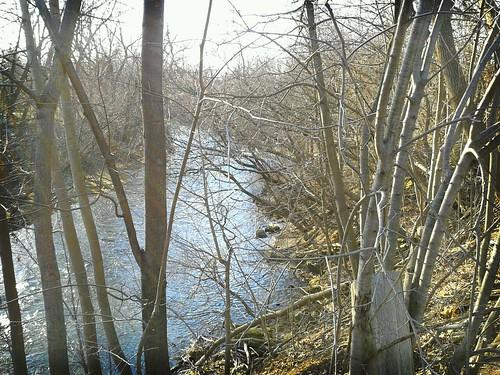 Speed River by scosborne